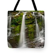 Fulmer Falls Tote Bag