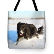 Fun In The Snow Running Tote Bag