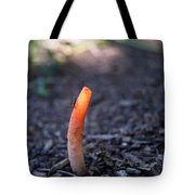 Fungi And Insect Tote Bag