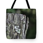 Fungi Green Tote Bag