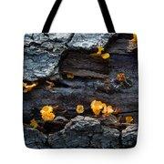 Fungi On Log Tote Bag