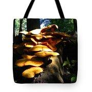 Fungus Colony 23 Tote Bag