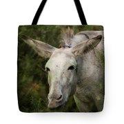 Funky Donkey Tote Bag