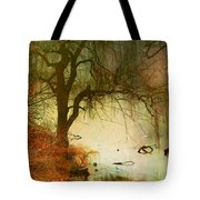 Funky Reflections 2 Tote Bag
