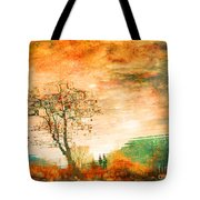 Funky Reflections Tote Bag