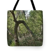 Funky Tree On Trail In Peters Canyon Tote Bag