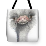 Funny Face Tote Bag by Phyllis Howard