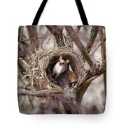 Funny Little Bird Tote Bag
