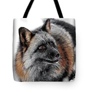 Funny Little Furry Face Tote Bag