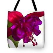 Fuschia Blossom Macro  Tote Bag