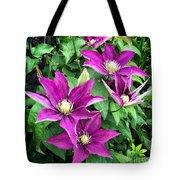 Fushia Clematis Flowers Tote Bag