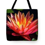 Fushia Waterlily 1 Tote Bag