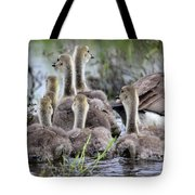 Fuzzy Butts Tote Bag