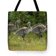 Fuzzy Fowlings Tote Bag