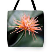 Fuzzy Orange Tote Bag
