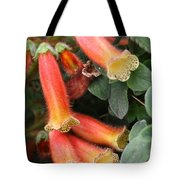 Fuzzy Temple Bells Tote Bag