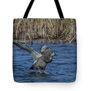Gadwall Landing Tote Bag