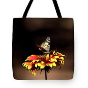 Gaillardia And Butterfly Tote Bag