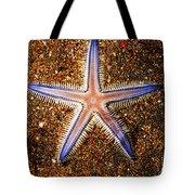 Galapagos Colorful Seastar Tote Bag