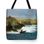 Cliffs At Suarez Point, Espanola Island Of The Galapagos Islands Tote Bag