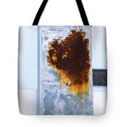 Cat In The Rust Tote Bag
