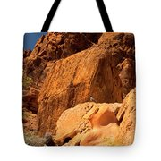 Gambels Quail In Profile Valley Of Fire Tote Bag
