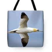 Gannet In Flight Tote Bag