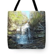 Ganoga Falls 3 - Ricketts Glen Tote Bag