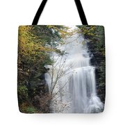 Ganoga Falls Tote Bag