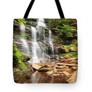 Ganoga Falls Ricketts Glen Tote Bag
