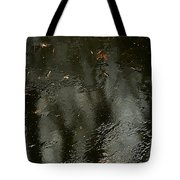 Garden In Winter. Tote Bag