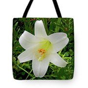 Garden Lily Posterized Background Tote Bag