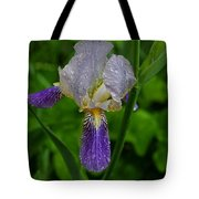 Garden Of Light Tote Bag