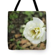 Garden Party Hybrid Tea Rose, White Rose Originally Produced By Tote Bag