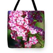 Garden Phlox Tote Bag