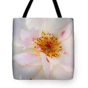 Garden Rose Blush Tote Bag