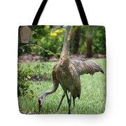 Garden Sandhills Tote Bag