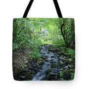 Garden Springs Creek In Spokane Tote Bag