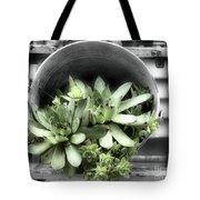 Garden Succulents Partial Color Tote Bag