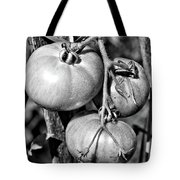 Garden Tomatoes In Black And White Tote Bag