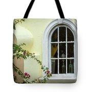 Garden Window Tote Bag by Todd Blanchard