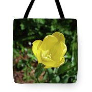 Garden With Beautiful Flowering Yellow Tulip In Bloom Tote Bag