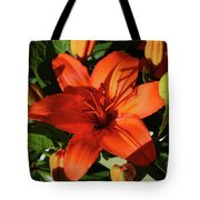 Garden With Lily Buds And A Blooming Orange Lily Tote Bag