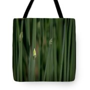 Garlic Chive Season Tote Bag