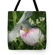 Garnished Showy Lady Slipper Tote Bag