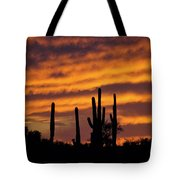 Gates Pass Sunset Tote Bag