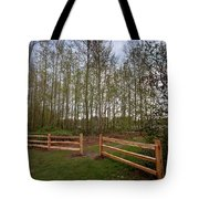 Gates To The Birch Wood Tote Bag