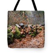 Gather No Moss Tote Bag
