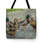 Gathering Of The Flock Tote Bag