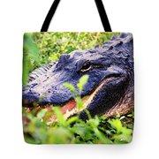 Gator 1 Tote Bag